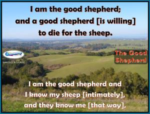picture for the good shepherd